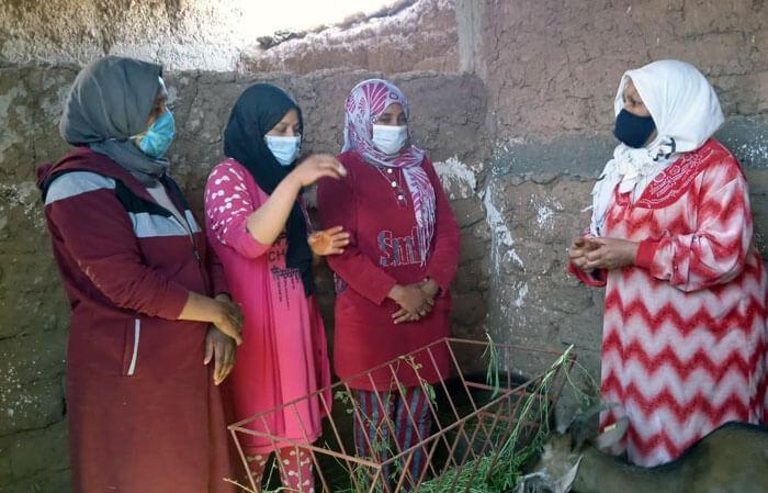 Après 6 mois du projet au Maroc Imik S'Imik, où en sommes-nous ?